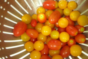 Recipe: Heirloom Tomato Bruschetta