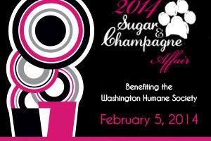 2014 Sugar & Champagne Affair